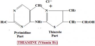 030917_1822_B12 الفيتامين B1 ماهو ؟ أعراض نقصه , وطرق الوقاية والمعالجة